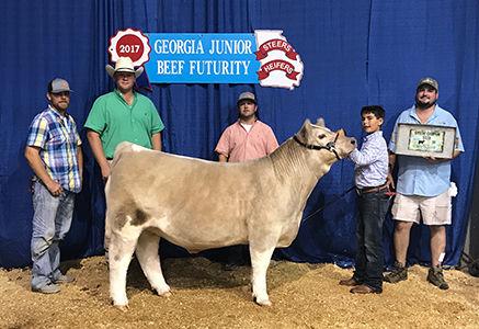 Grand Steer - GA Jr Beef Futurity - Luke