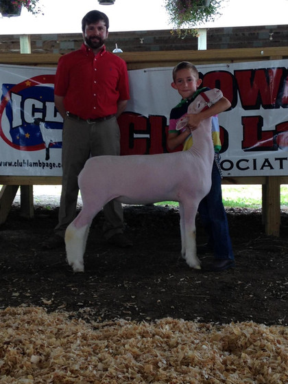 Reserve WBI  2015 Charles City Jackpot Shown by Nick Williams