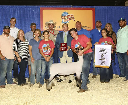34-reserve-grand-champ-mkt-lamb.jpg