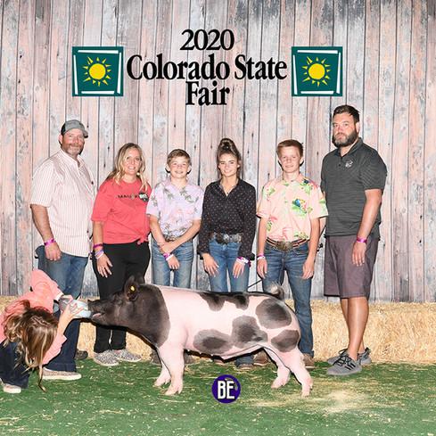 Res. Champion Light Weight Cross Barrow Colorado State Fair Kylie Kayser