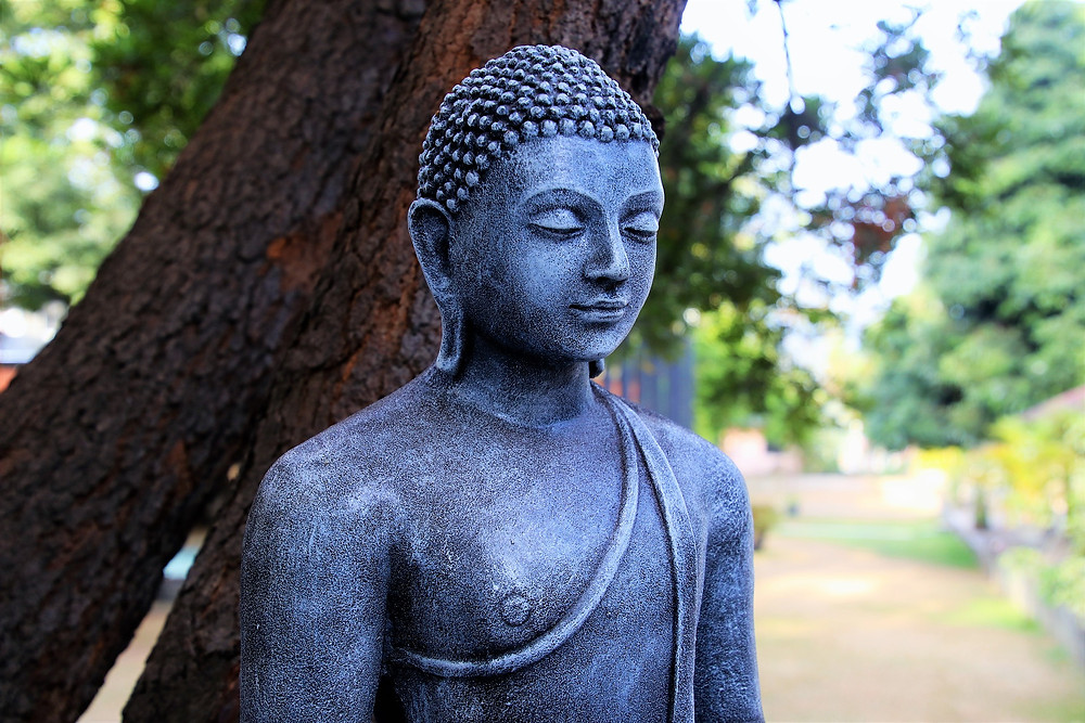 6 common blockages that are helped by a mindfulness practice - Amy's Yoga