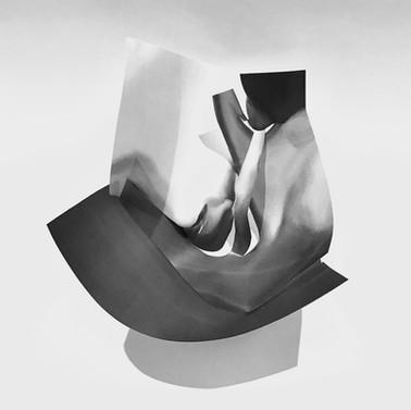 Paper Flesh, 2020