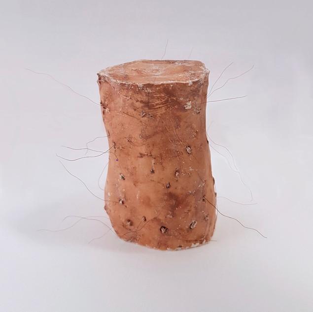 Human Fur Prototype, 2019 (plaster, clay, fake hair)
