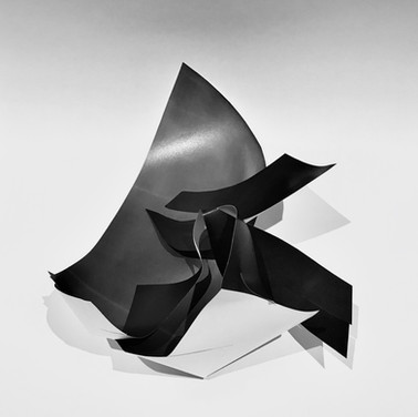 Paper Flesh, 2020 (A4 printer paper)