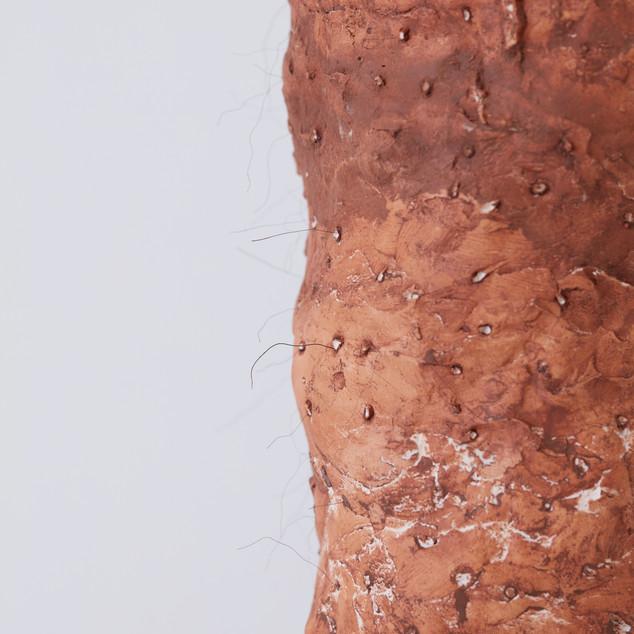 Human Fur (close-up), 2019 (plaster, clay, fake hair, MDF board, metal rod)