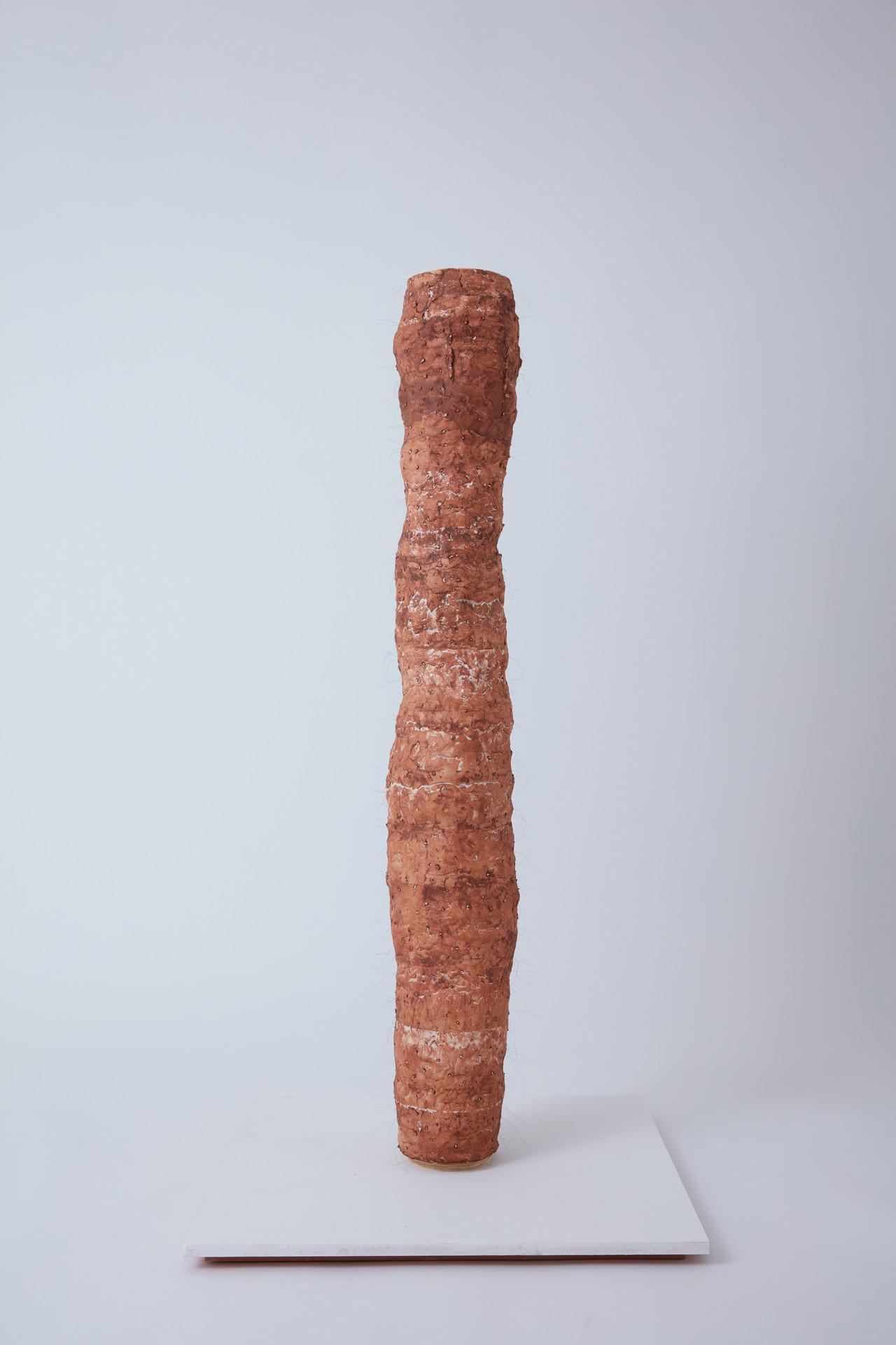 Human Fur, 2019 (plaster, clay, fake hair, MDF board, metal rod)