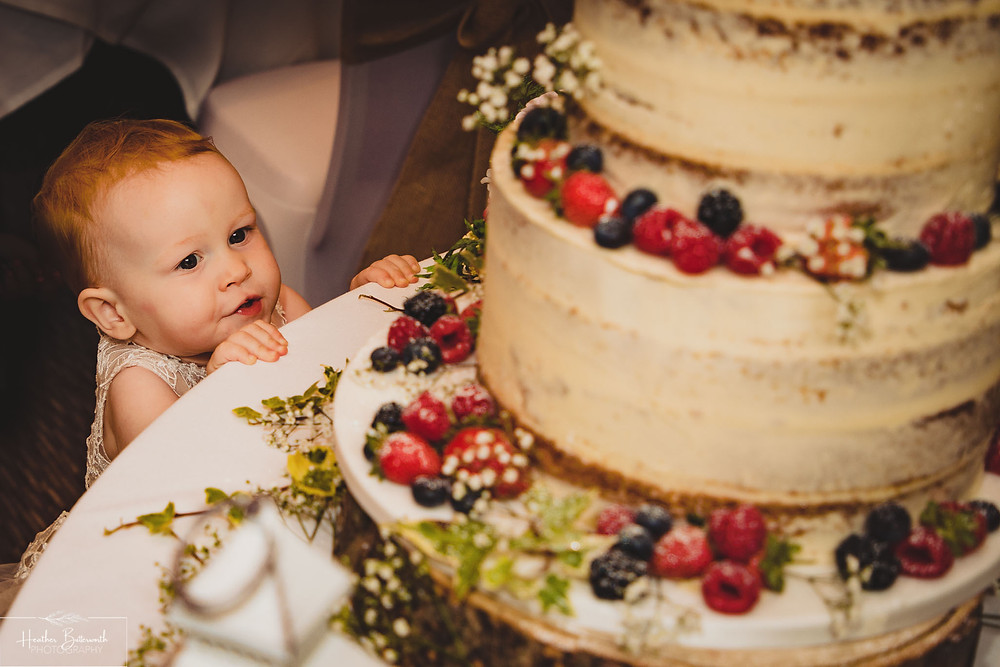 Toddler excitedly looking at a cake with multiple tiers after the wedding ceremony at Hollins Hall in Baildon, Yorkshire