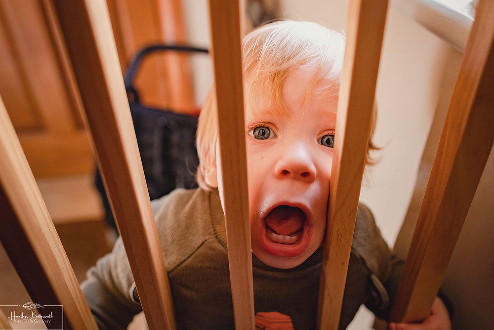 toddler screaming from behind a stair gate