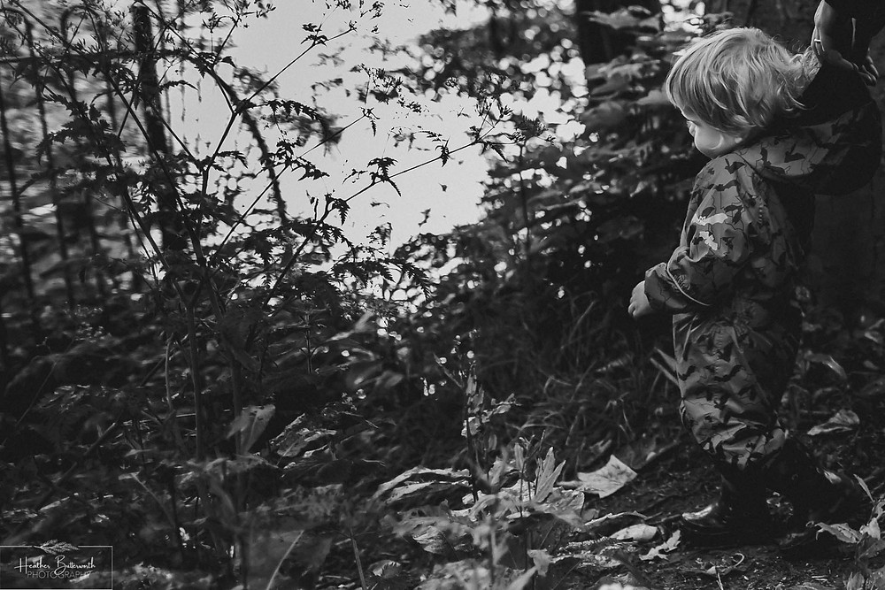boy playing in roundhay park woods after restrictions were slightly lifted after the COVID-19 lockdown in Leeds , Yorkshire in June 2020
