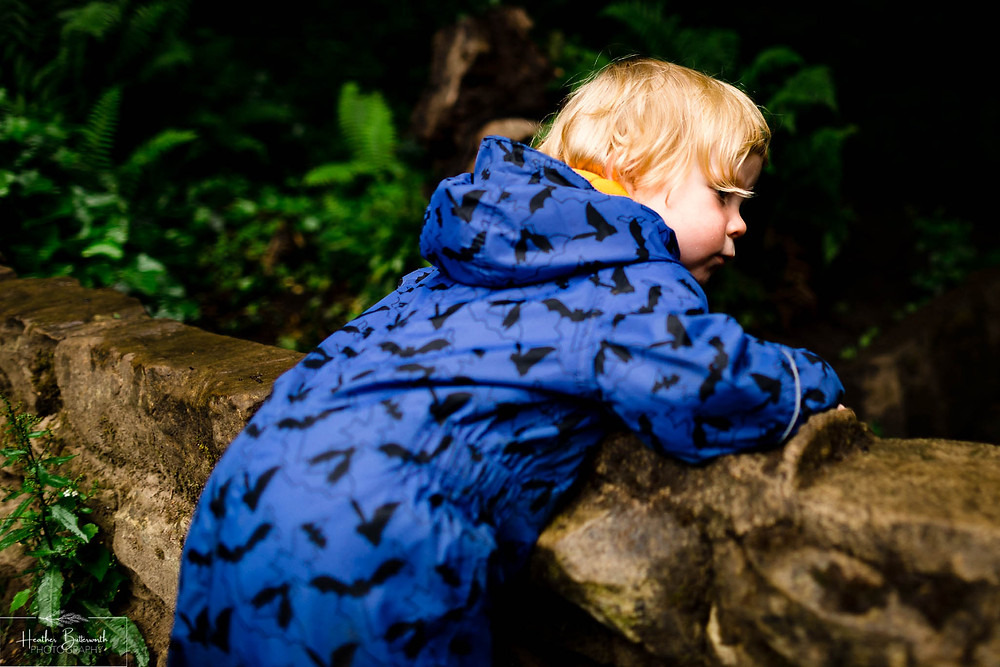 boy next to a stream in roundhay park woods after restrictions were slightly lifted after the COVID-19 lockdown in Leeds , Yorkshire in June 2020