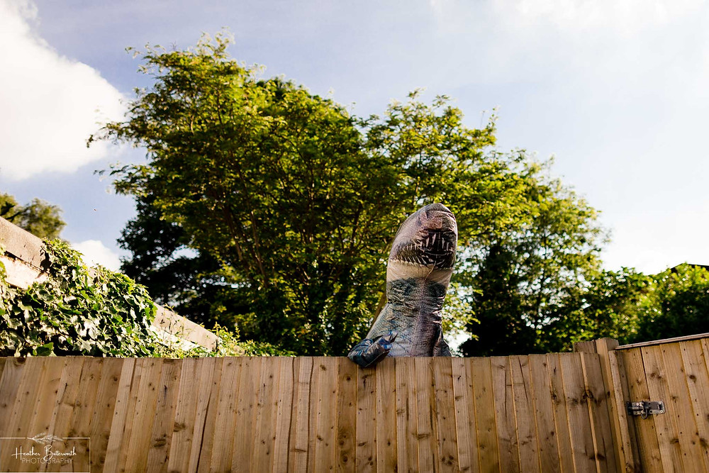 inflatable dinosaur looking over a fence