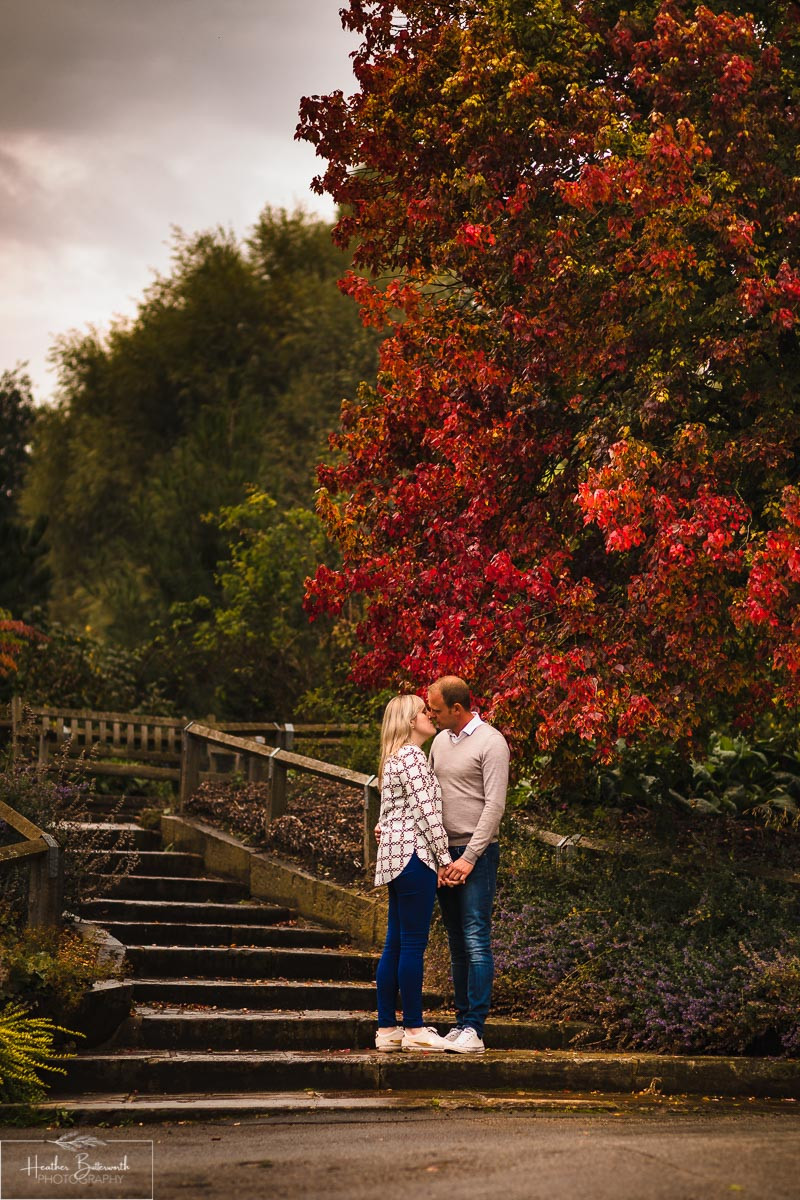 golden acre park Leeds wedding photographer engagement shoot red tree