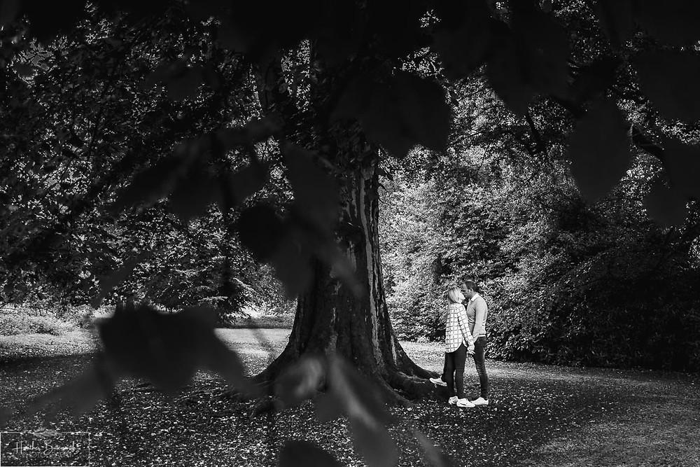 golden acre park Leeds wedding photographer engagement shoot tree