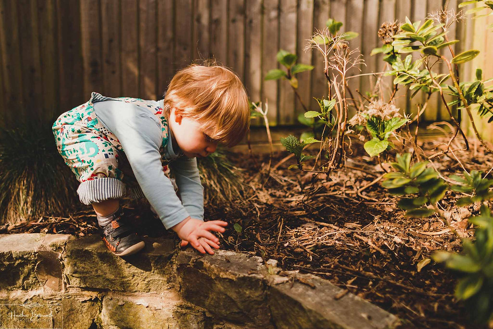 a toddler plating on a raised bed in the garden in the sunlight