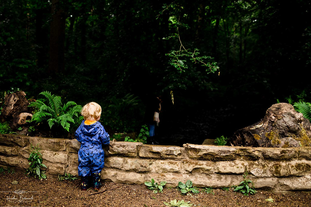 a boy playing in roundhay park woods near a stream after restrictions were slightly lifted after the COVID-19 lockdown in Leeds , Yorkshire in June 2020