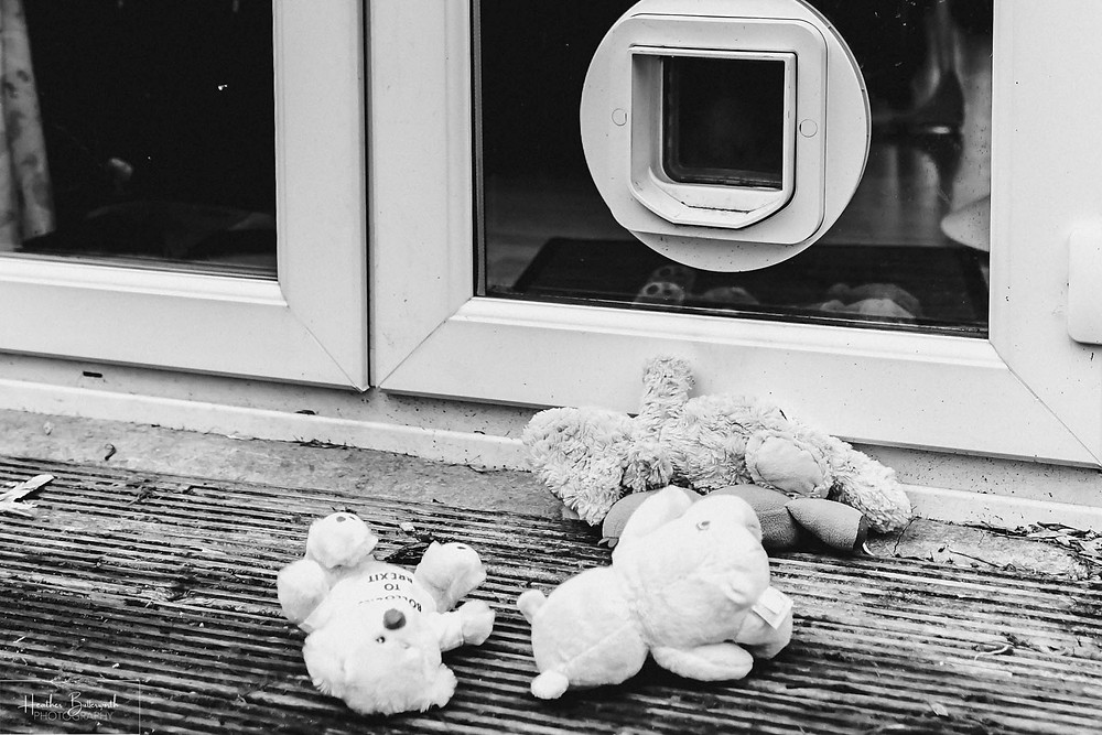 black and white image of teddy bears that have been posted through a cat flap
