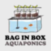 BIBA bag in box aquaponics