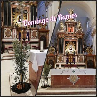 DOMINGO DE RAMOS EN LA PASIÓN DEL SEÑOR.