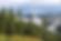 IdahoForestsEnvironmentalBenefits-1024x6