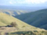 Canyon-Grasslands-ID.JPG
