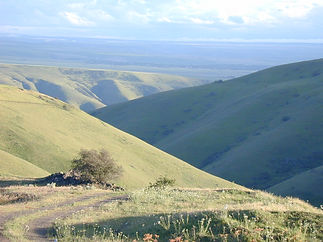 Canyon-Grasslands-ID.JPG