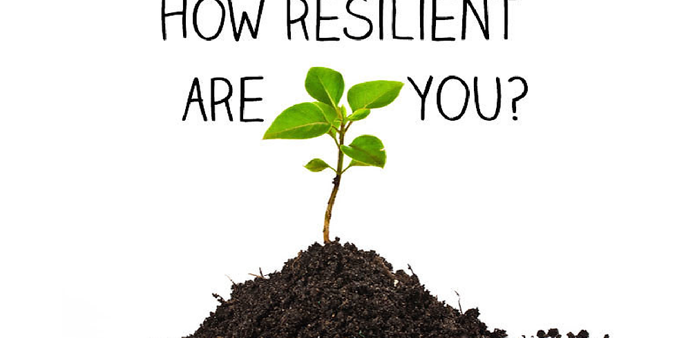 Developing Resilience at Work_Part 2