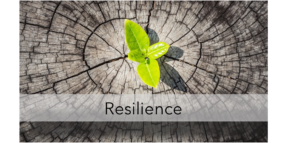 Developing Resilience at Work_Part 1