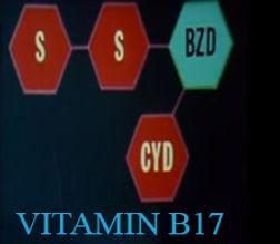 איך פועל ויטמין בי17