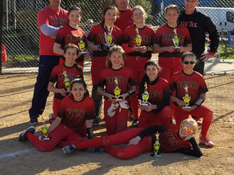 11u Heat Places #2 at Niles Spring Fling Tournament