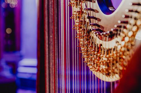 Eventfotografie Wien, Eventfotograf, Bloggerevent Fotograf, natürliche Eventfotos, Businessevents, Eventreportage, moderne Veranstaltungsfotografie, Eventfotografin Niederösterreich