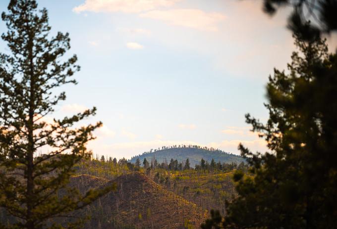 Westcreek Views