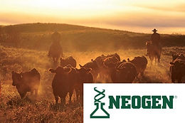 Neogen Canada: New Hair Sample Requirements