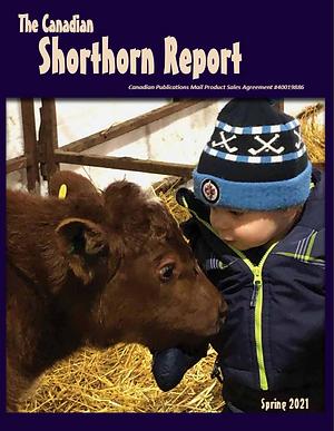 SH Report Spring 2021.PNG