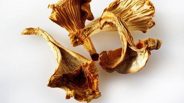Dried Chanterelle 250 gram 雞縱菌乾250克