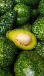 FOTO OUR PRODUCTS AVOCADO.jpg