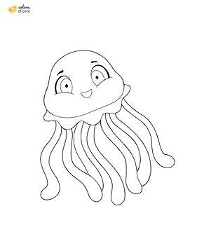 Jellyfish_.jpg