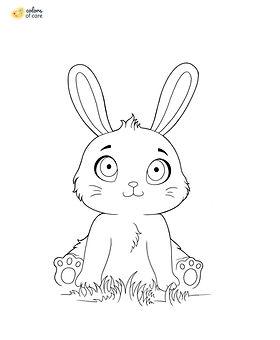 Bunny_2.jpg