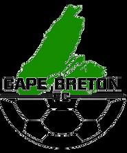CBFC logo.png