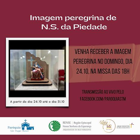 Imagem peregrina de N.S. da Piedade(4).png