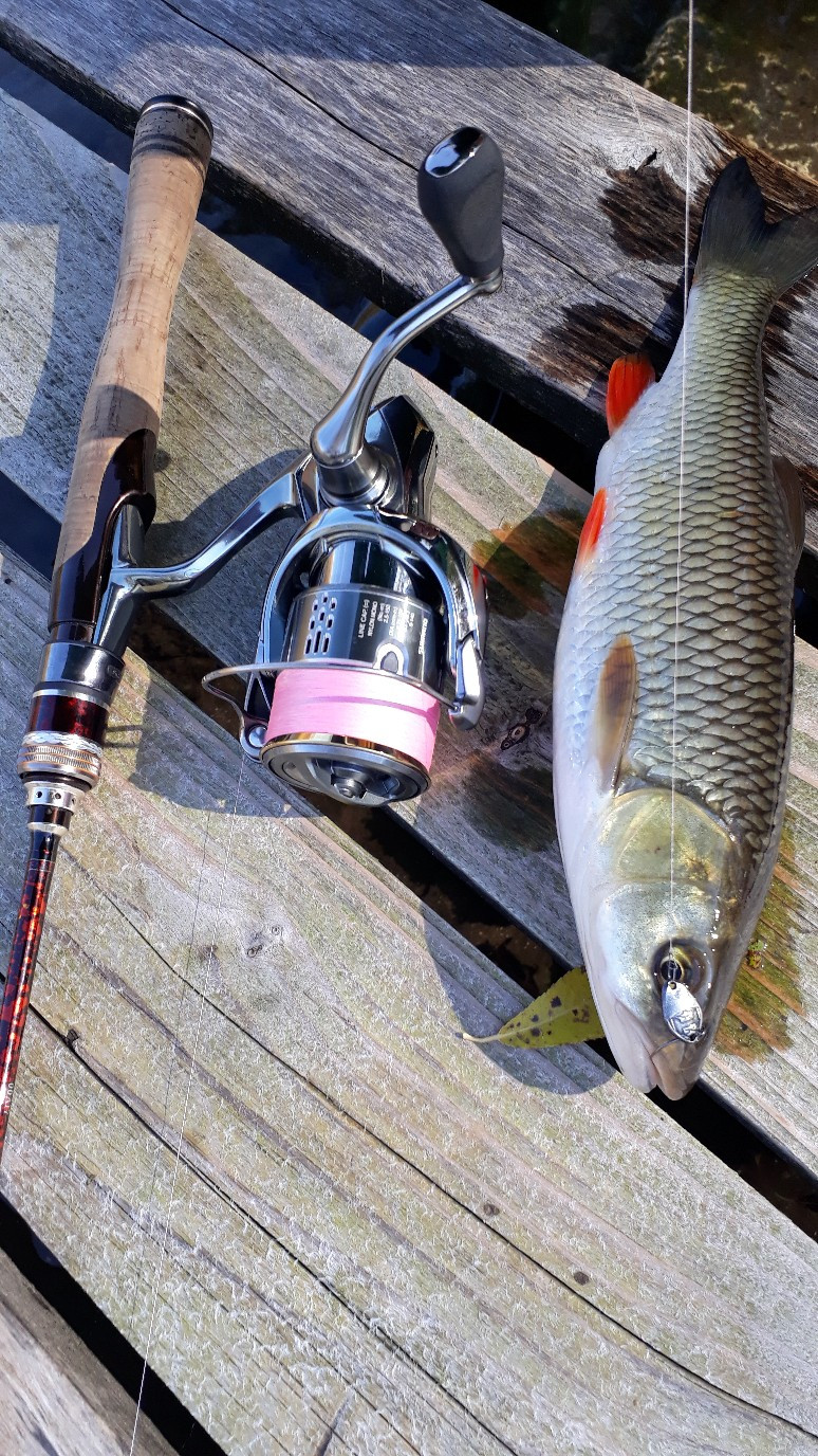 Приманки на осенней рыбалке