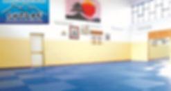 daito ryu aiki jujutsu palestra shodan reggio aikido