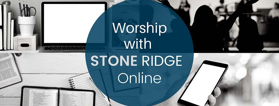New Stone Ridge Online_Banner.png