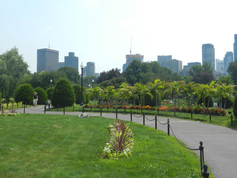 Common Park, Boston