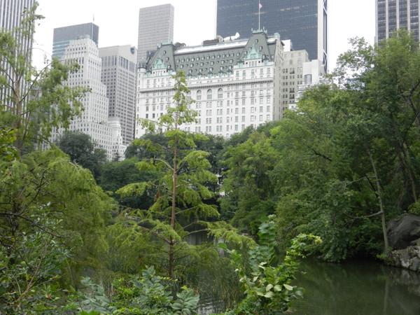 The Pond avec vue sur Plaza Hotel