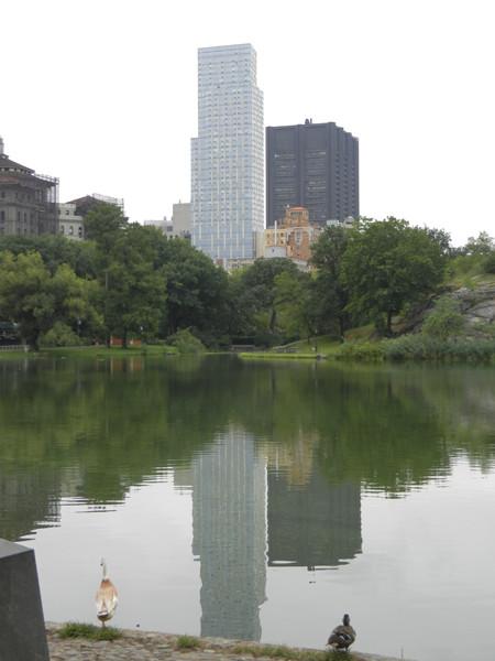 Central Park à vélo