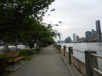 Une visite à Roosevelt Island