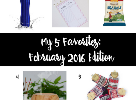 My 5 Favorites: February 2016 Edition