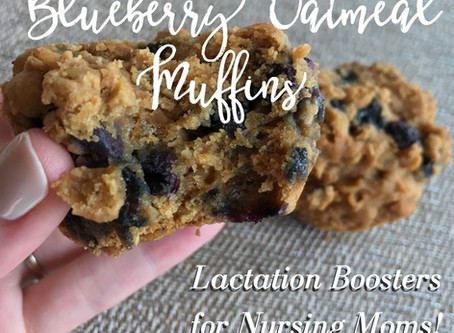 Blueberry Oatmeal Muffins (Lactation Boosters for Nursing Moms!)