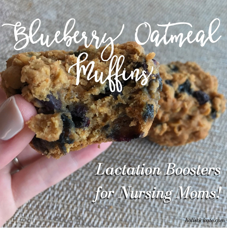 Blueberry Oatmeal Muffins for Lactation and Nursing Moms