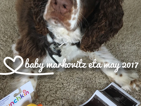 The Exciting News (But Unpleasant 1st Trimester Woes!)